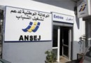 3.000 projets de création de micro-entreprises financés par l'ANSEJ d'Oran