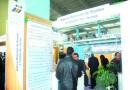 300.000 micro-entreprises créées dans le cadre de l'Ansej