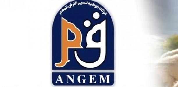 Le montant maximum pour l'obtention d'un micro-crédit relevé pour les wilayas du sud